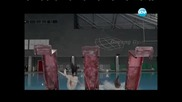 Вип Новини (19.04.2013 г.) Стелла и Dancing Stars, Psy и Gentleman, Група