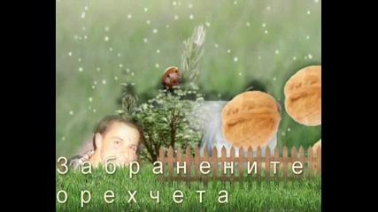 """"""" Забранените Орехчета """" - Скоро!!"""