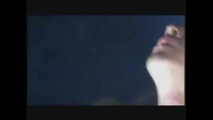 [hq] Rammstein - Tier (live)