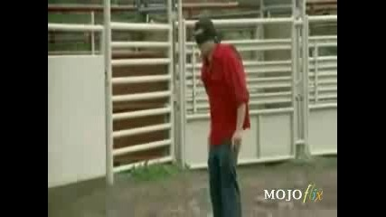Jackass - среща с див биг
