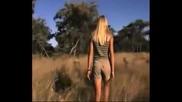 Гепарди нападат блондинка, но тя овладява ситуацията !