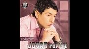 Jovan Perisic - Moje najmilije - (Audio 2007) HD