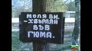 Ето това е простащината на българина...