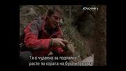 - Бг Превод - Оцеляване на предела - Румъния