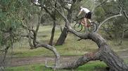 Паркур с колело