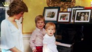 Най-добрите филми, които показват живота на кралското семейство