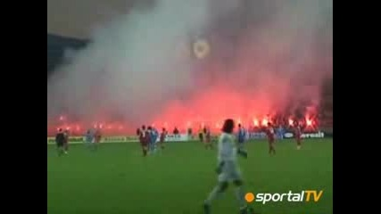 Levski Sofia Ultras At The Derby Match