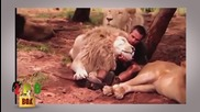 Невероятно! Силни и красиви приятелства между хора и диви животни!
