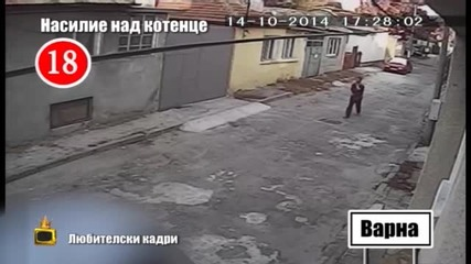 убиец на котка е без обвинение седем месеца - Господари на ефира (30.06.2015)
