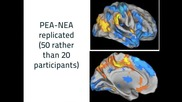 3 - 1 - Module 5.1 Studies and Neurological Evidence of Coaching to the Pea