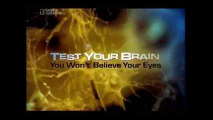 Игри на мозъка - 1 част