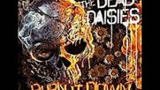 The Dead Daisies - Bitch 2018