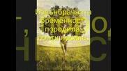 Есента Е Жена - Румен Марков