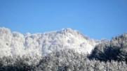 Снежна красота