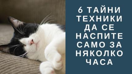 6 тайни техники да се наспите само за няколко часа