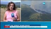 Няма действащи пожари в страната