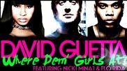 David Guetta feat. Flo Rida & Nicki Minaj - Where Dem Girls At