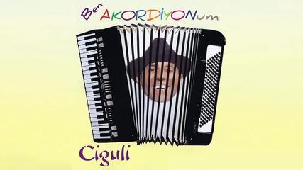 Ciguli - Ben Akordiyonum (full Albüm)2016