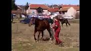 Конете на Тудурица в село Малорад