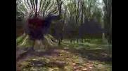 Mortal Kombat Video