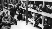 Аушвиц-безумието на третия райх