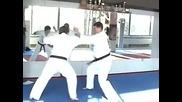 Видео от Okinawa Karate Bulgaria - Shorin Ryu 31 януари 2010 г. 04 45