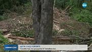 Отводняват засегнатите райони след пороя в Тетевенско