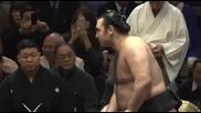 Котоошу с първа победа срещу Тойохибики / Нацу Башо 12.1.2014
