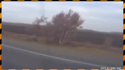 Убиец на пътя (ШОК)