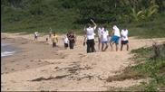 Германците с разходка по плажа