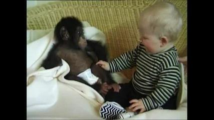 Бебе и Маймунка