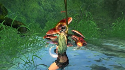 Blade And Soul - Nacked Female Combat