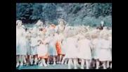 Нацистка Германия През 1939, В Цвят
