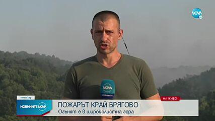 Новините на NOVA (01.08.2021 - централна емисия)
