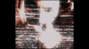 Wwe - Matt Hardy Video