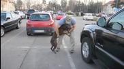 Куче посреща войник