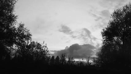 Trixie Whitley - _breathe You In My Dreams_ (anton Coene Clip)[1]