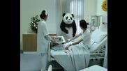 Топ 5 реклами на Панда Сирене