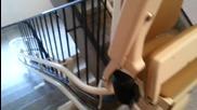 Ето как се изгражда приспособление за да може инвалид да се изкачва по стълби!
