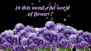 В прекрасния свят на цветята! ... ...
