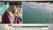 Сърфисти чистят българските плажове