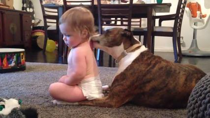 Куче масажира бебе