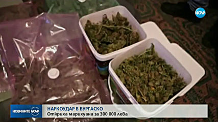 Откриха марихуана за 300 000 лв. при акция в Бургаско
