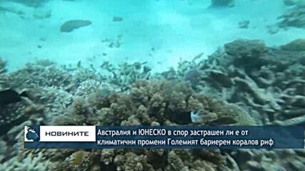 Австралия и ЮНЕСКО в спор застрашен ли е от климатични промени Големият бариерен коралов риф