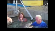 Делфин се закача с мъж ,пръска го с вода