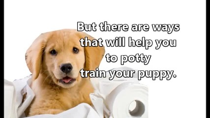 Potty Training An Endurable Task if Done With the Right Strategy