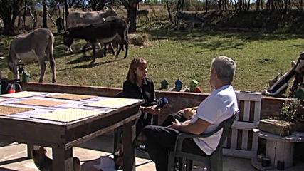 Защо един италианец напусна родния си град Римини и създаде магарешка ферма в с. Маджаре?