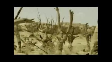 Seytanin Itirafi - 1. Kisim