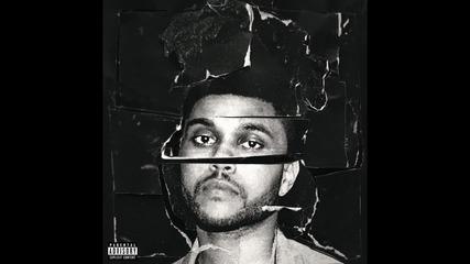 The Weeknd - Angel ( A U D I O )