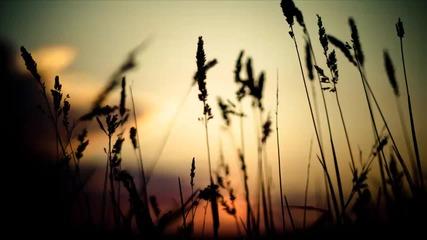 Markus Schulz & Max Graham - Goodbye (dns Project Remix Edit)